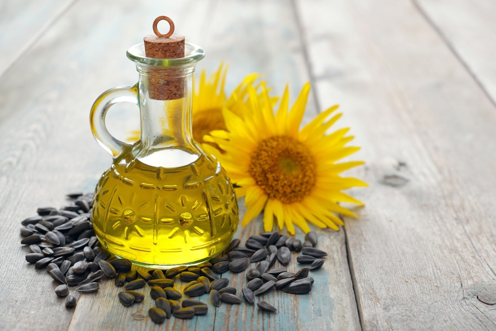 Dầu hướng dương chứa hàm lượng dinh dưỡng cao hàng đầu trong thế giới dầu thực vật