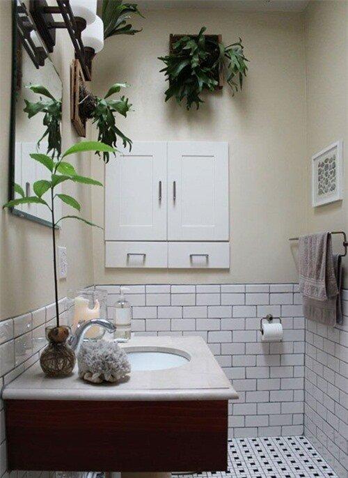 Phòng tắm thư giãn và đẹp mắt nhờ sử dụng cây cảnh 2