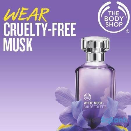 nước hoa The Body Shop White Musk