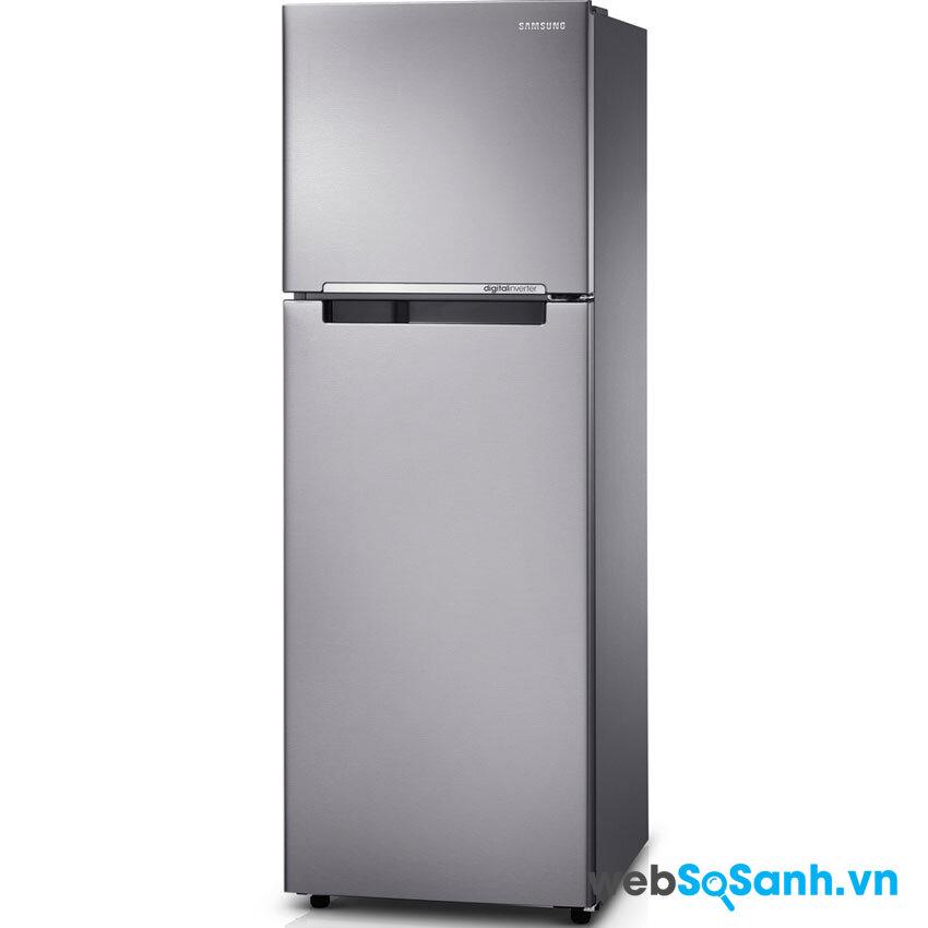 Tủ lạnh Samsung RT-25FARBDSA/SV