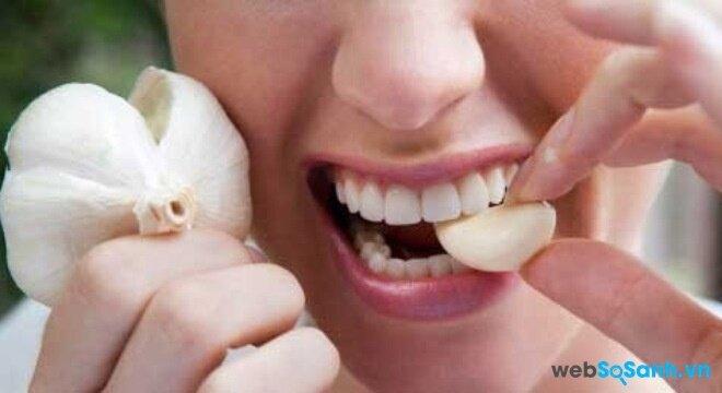 Ăn tỏi sống có nhiều ích lợi và hỗ trợ trị cúm rất tốt