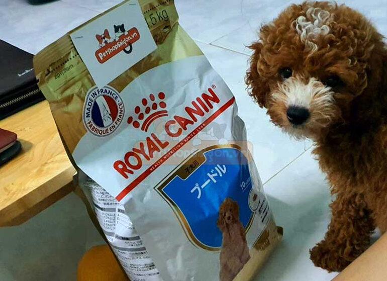 Thức ăn cho chó Royal Canin Poodle Puppy