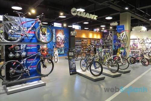 mua xe đạp giant chính hãng ở đâu tại hà nội, thành phố hồ chí minh