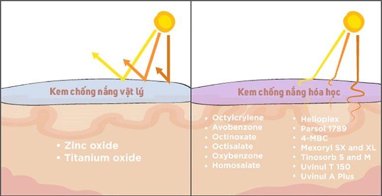 Kiểm tra tính chất của kem chống nắng