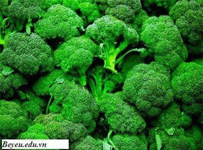 Rau có màu xanh đậm nâng cao sức đề kháng cho trẻ, rau co mau xanh dam nang cao suc de khang cho tre