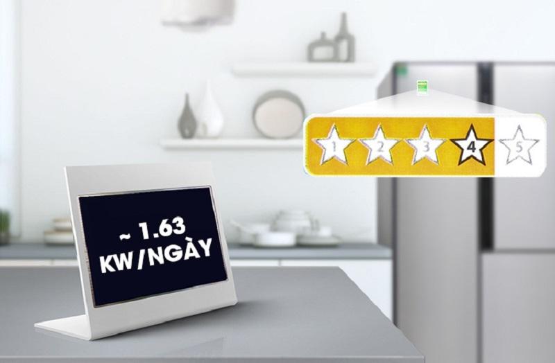 Tủ lạnh LG 629 lít GR-R267JS