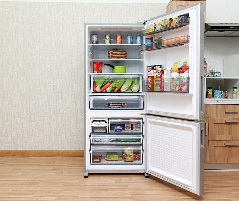 Tủ lạnh 2 cánh là dòng tủ lạnh rất đa đạng, có từ cả phân khúc bình dân cho đến cao cấp