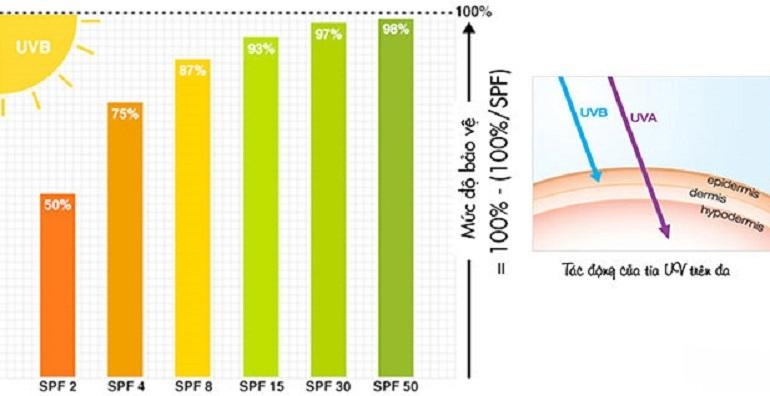 Lựa chọn chỉ số SPF và PA phù hợp với từng loại da
