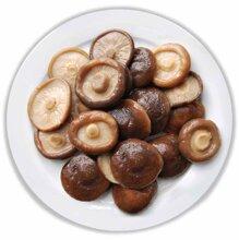 10 loại nấm phổ biến mà bạn cần biết