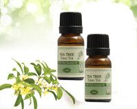 15 tác dụng tinh dầu tràm trà dành riêng cho sức khỏe sắc đẹp nữ giới
