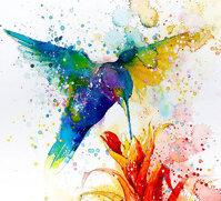 15 tranh màu nước đẹp và tư vấn lựa chọn màu nước giá rẻ cho người đam mê hội họa