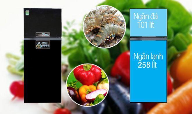 tủ lạnh Toshiba GR-AG41VPDZ - 2 cánh, Inverter, 359 lít