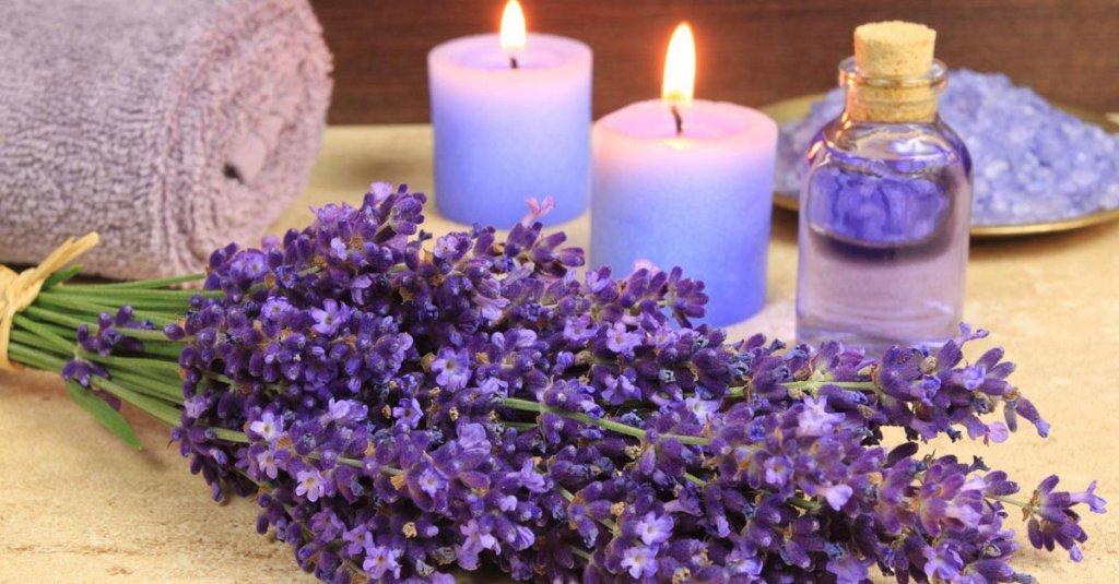 Nến thơm Lavender mang hương thơm ngây ngất của loài hoa tím xinh đẹp