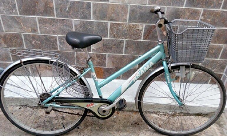 Xe đạp Asama Warrior