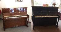 2 cây đàn Piano Apollo TAV đáng để bạn sở hữu và địa chỉ đáng tin cậy cho bạn