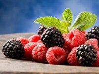 25 thực phẩm tốt cho não tăng trí thông minh ngừa lão hóa hiệu quả