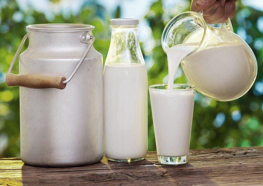Sữa tươi - Nguồn cung cấp năng lượng dồi dào cho bé