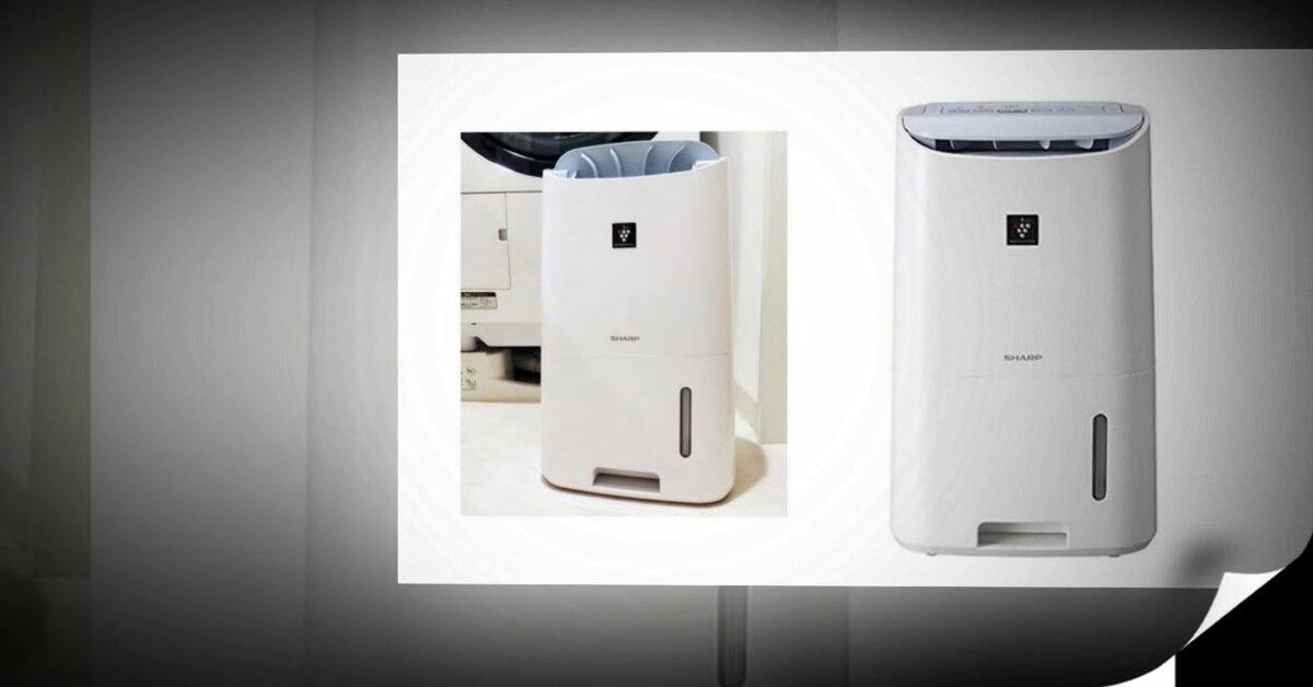 3 lựa chọn máy hút ẩm không khí tốt nhất của Sharp ở thời điểm này