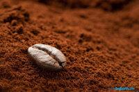 4 cách phân biệt cà phê nguyên chất và cà phê giả