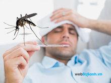 4 điều không thể bỏ qua khi bị sốt xuất huyết