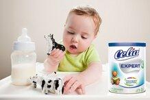4 thương hiệu sữa bột Pháp tốt cho bé mà mẹ nên tham khảo