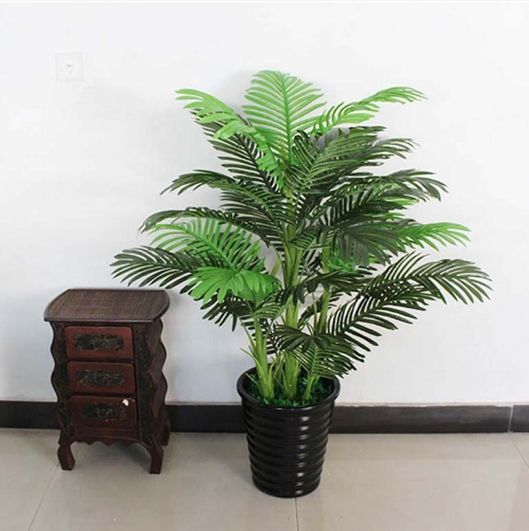 cây xanh phong thủy phòng khách