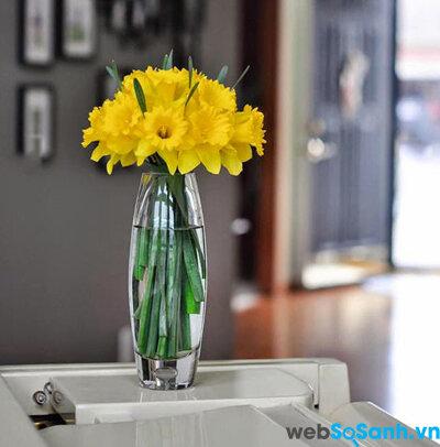 """5 cách cắm độc đáo với loài hoa Tết """"sang chảnh"""" – Thủy tiên vàng"""