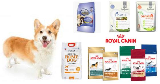 5 thương hiệu thức ăn khô cho chó loại tốt nhất hiện nay