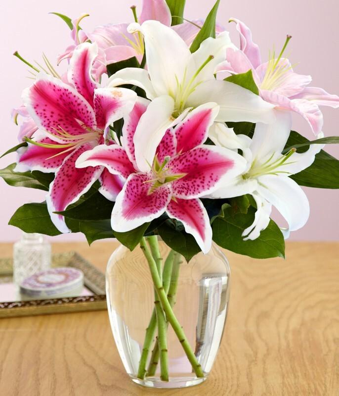 hoa lily cắm trong lọ hoa thủy tinh sang trọng
