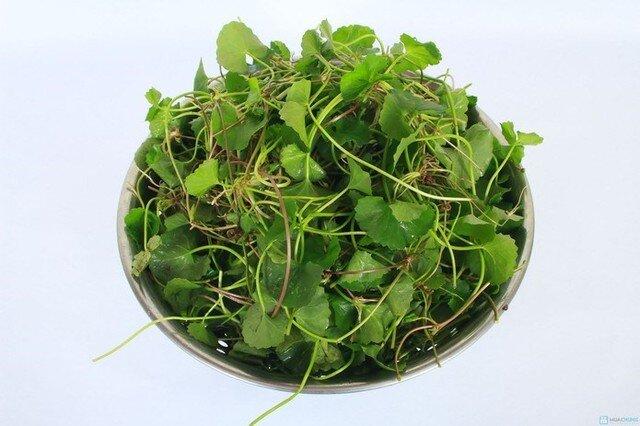 9 loại rau củ đặc biệt tốt cho da vào mùa hè