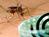7 dụng cụ diệt muỗi hiệu quả