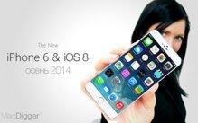 Apple tham vọng biến iPhone 6 màn hình lớn thành sản phẩm chính thống
