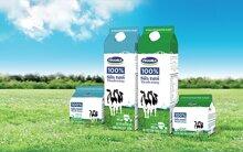 Bảng giá các sản phẩm sữa tươi và sữa chua VINAMILK cập nhật tháng 6/2017