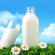 Bảng giá sữa bột hữu cơ cho bé cập nhật mới nhất