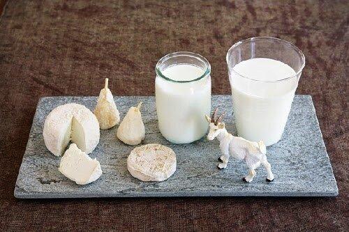 Bảng giá sữa bột từ sữa dê cập nhật mới nhất tháng 12/2016