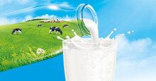 Bảng giá sữa tươi nguyên kem cập nhật mới nhất tháng 8/2019