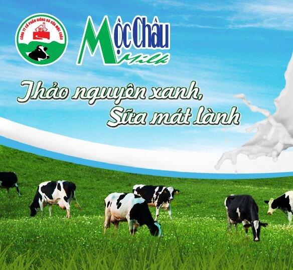 Bảng giá sữa tươi và sữa chua Mộc Châu mới nhất (cập nhật tháng 9/2015)