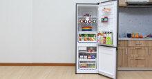 Bảng giá tủ lạnh Electrolux cập nhật mới nhất 2019