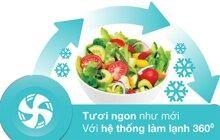Bảo quản rau củ tươi lâu hơn với công nghệ hiện đại trên tủ lạnh Electrolux