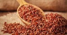 Ăn gạo huyết rồng giảm cân và những nguy hiểm chết người