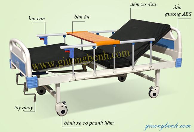 Giường bênh đa chức năng giá rẻ Nikita DCN02