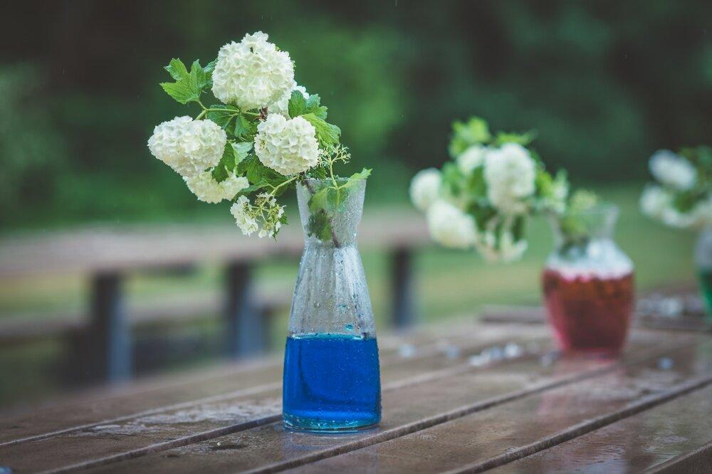 Các cách cắm hoa đẹp đơn giản mà đầy sáng tạo dành cho cô nàng vụng về