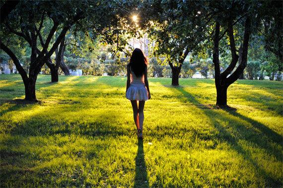 Các hiệu ứng ánh sáng trong nhiếp ảnh