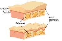 Các tác dụng phụ của Collagen