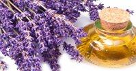 Cách dùng tinh dầu hoa oải hương trị mụn