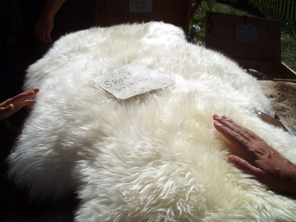 Cách phân biệt chăn lông cừu thật giả