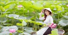 Chụp ảnh hoa sen ở Hà Nội năm 2019: kinh nghiệm và giá gói chụp dã ngoại