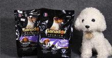 Có nên sử dụng thức ăn cho chó Ganador không?