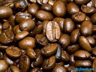 Có những loại cà phê nào?