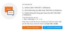 Có thể đặt mua hàng thông qua đường dây nóng Lazada hotline tại Việt Nam không?